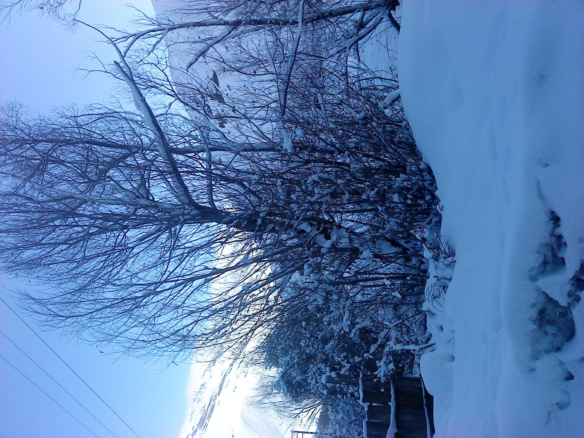 زمستان 90